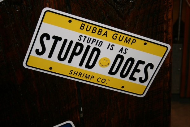 bubba gump stupid is as stupid does